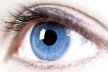 sam patient services | göz sağlığı ve hastalıkları