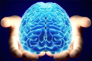 sam patient services | beyin cerrahisi